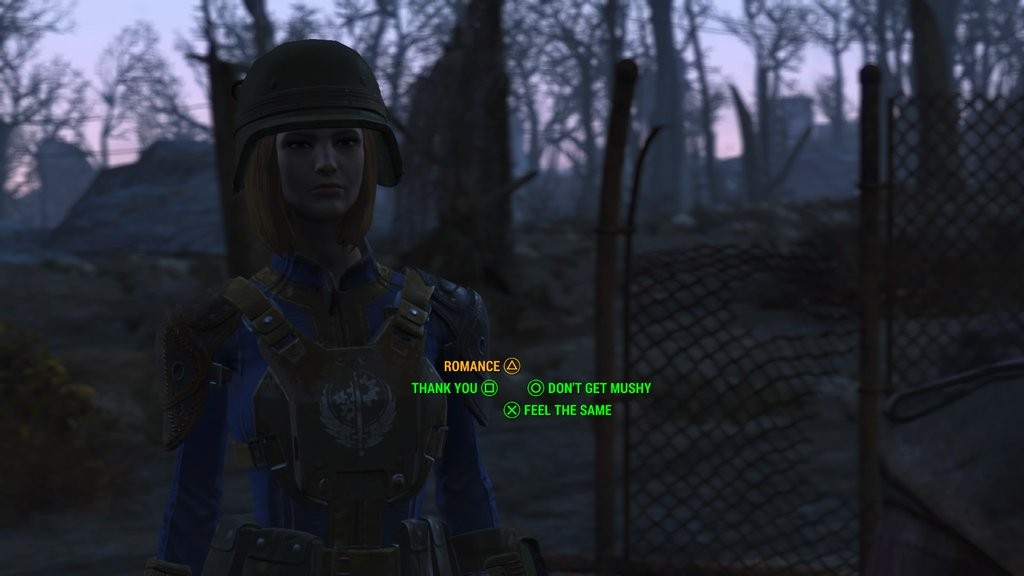 Romance in the wasteland