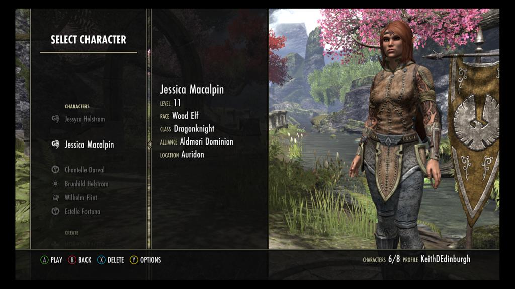 Jessica Mcalpin, Wood Elf Dragonknight
